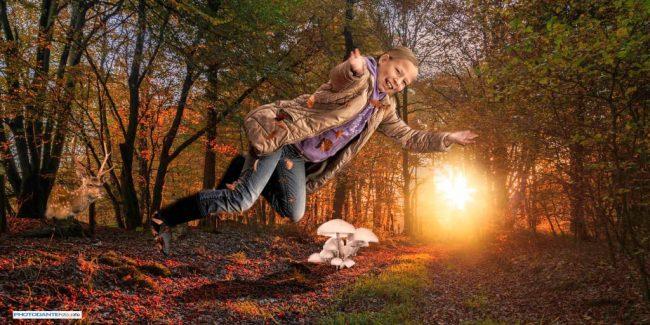herfst, ardennen, fee
